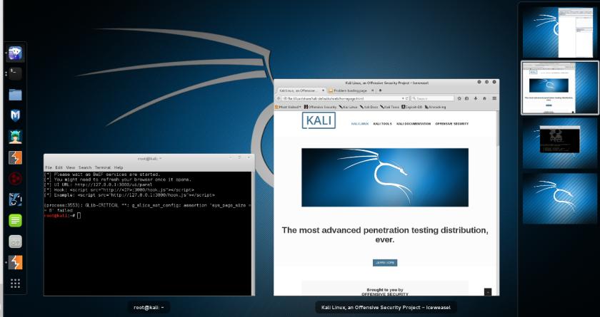 Kali 2.0 Desktop 10